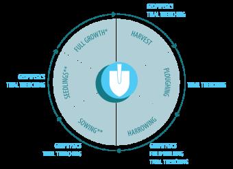 Crop Cycle Diagram