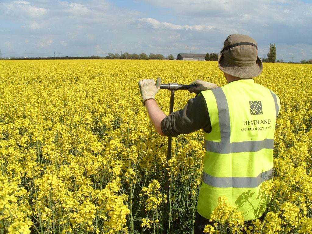 Headland Worker in a Field